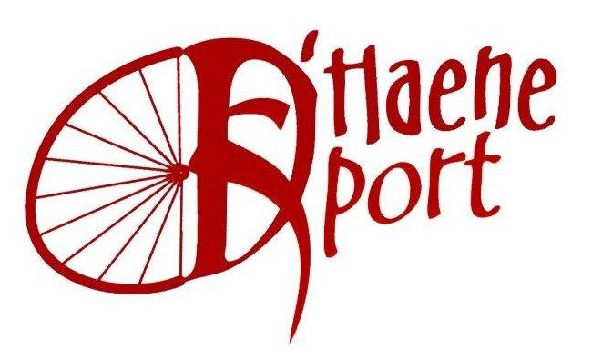D'Haene Sport - Logo