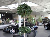 Autobedrijf Bellens