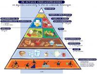 Voedingsleer-dieet