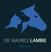 Dierenarts Lambie