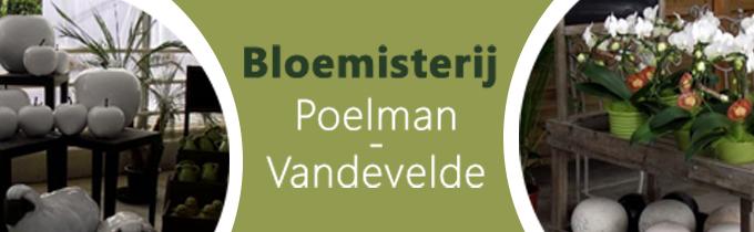 Bloemisterij Poelman - Van De Velde