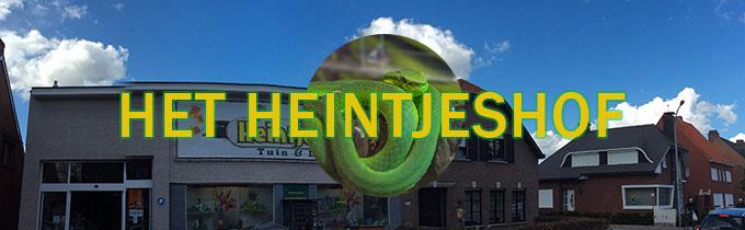 Heintjeshof ('t)