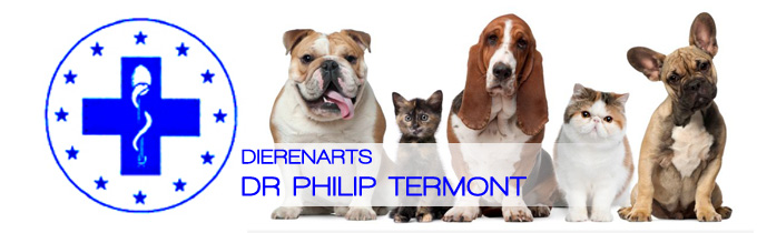 Dierenarts Termont