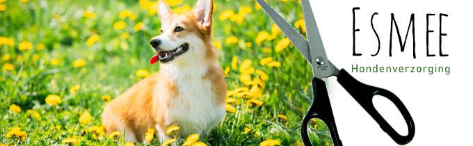 Esmee Hondenverzorging