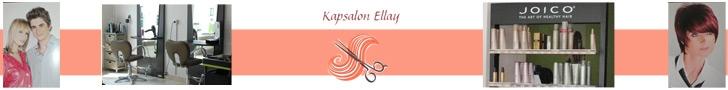 Kapsalon Ellay