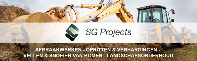 Sg Projects