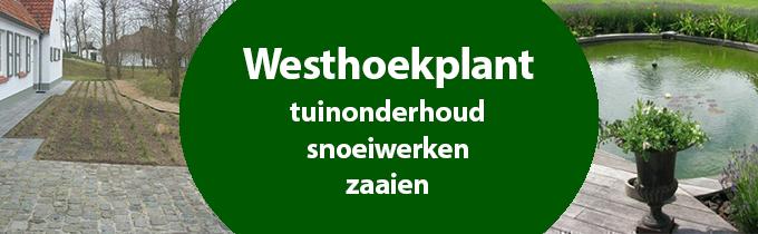 Westhoekplant