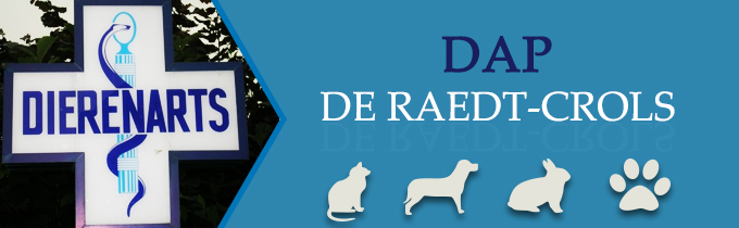 DAP De Raedt Crols