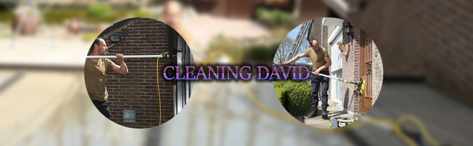 Cleaning David