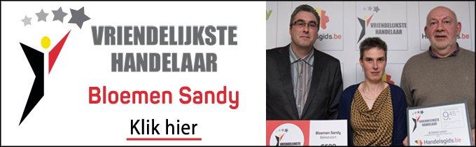 Bloemen Sandy