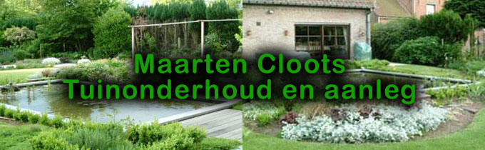 Maarten Cloots