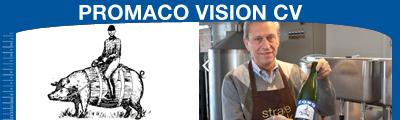 Promaco Vision cv