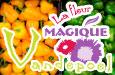 Fruit Vandepoel