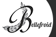 Bellefroid bv