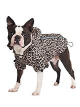 Coole Regenjasjes hond
