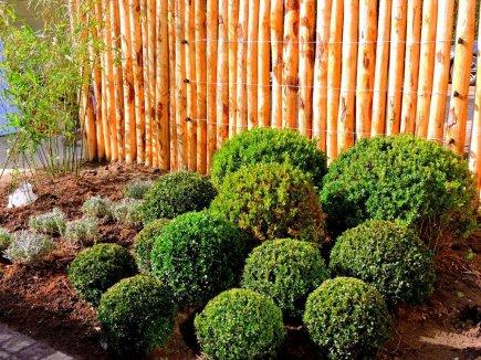 Kastanjepalen- Acaciapalen