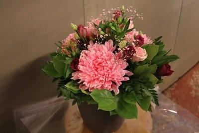 Prachtige Snijbloemen