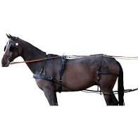 Paardengetuig herstellen