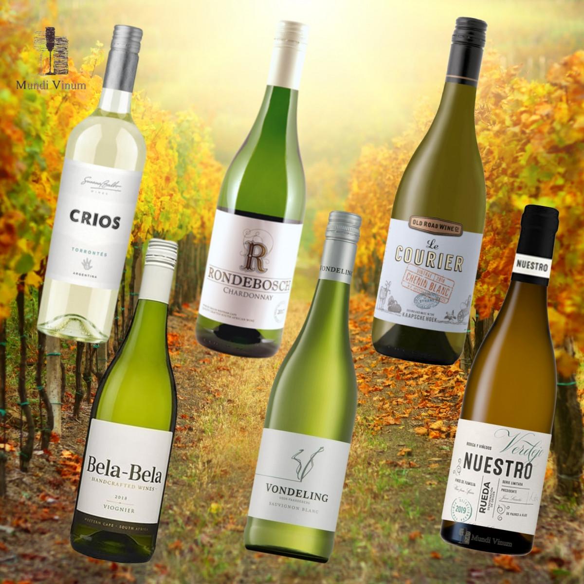 Proefpakket Budget Witte wijn
