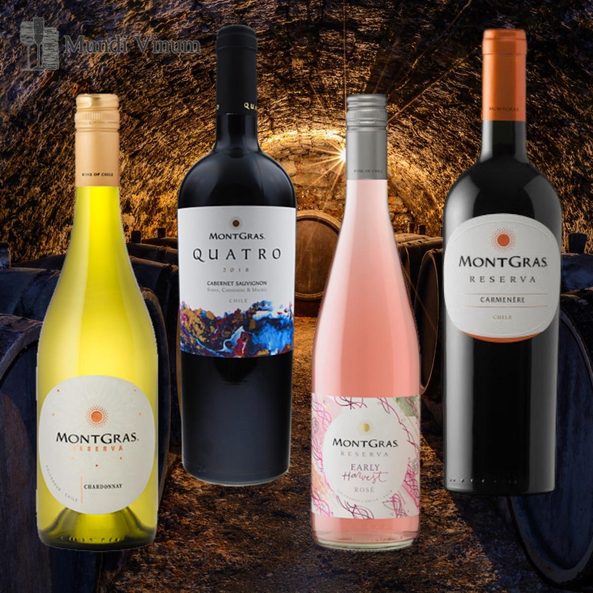 Montgras wijnen uit Chili