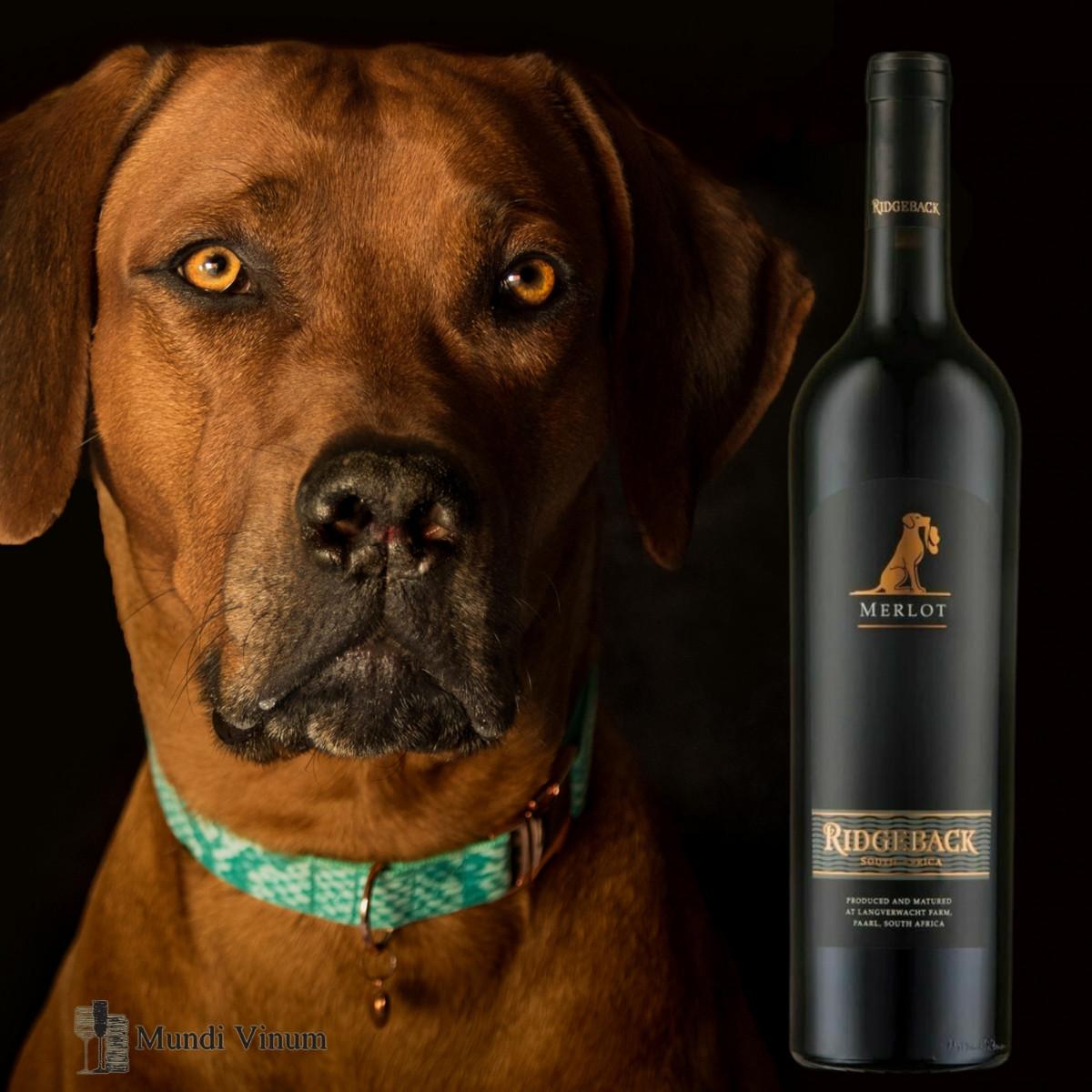 Ridgeback wijn