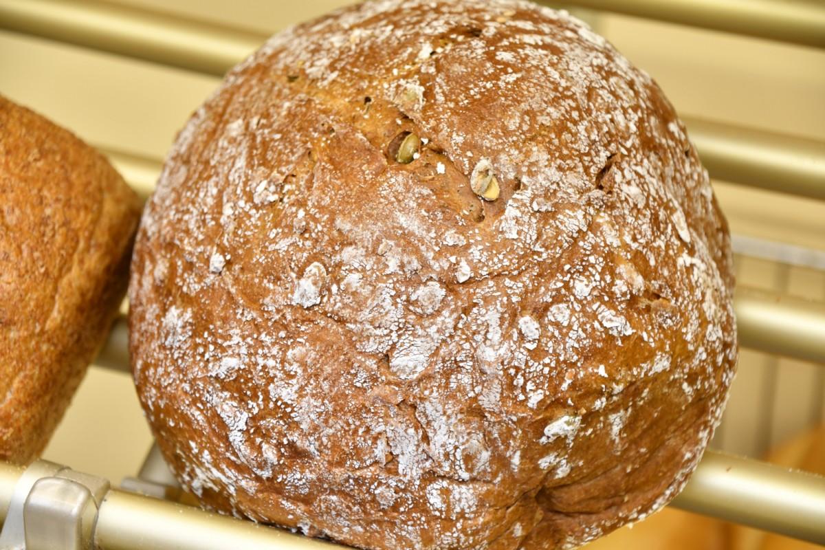 Torendra brood