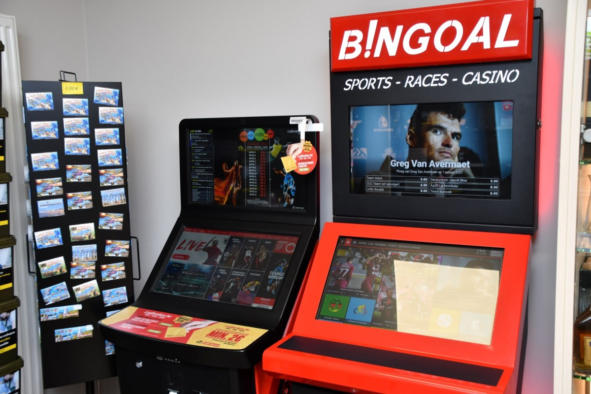 Bingoal Sports-Races-Casino