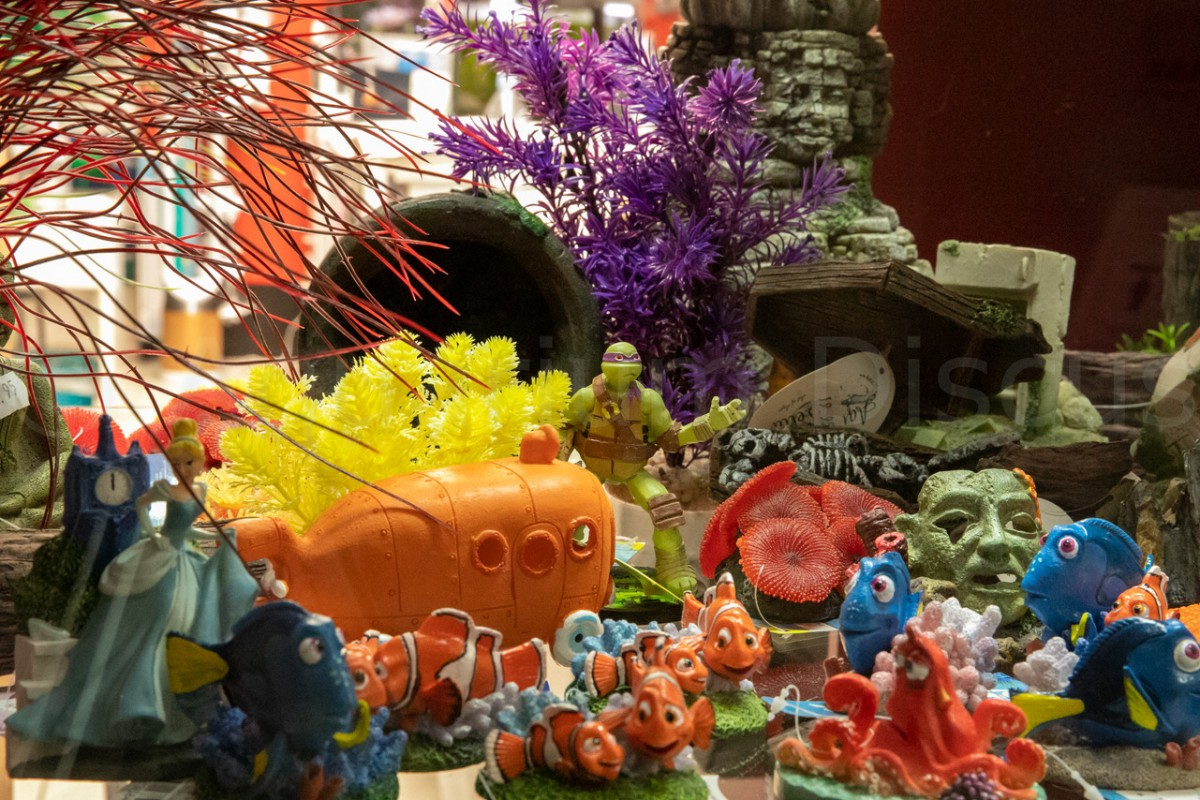 Aquariumdecoratie