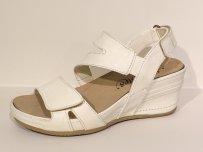 FOOTNOTES SARA 71.015.G-0012-2