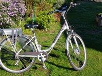 Elektrische fiets Torino