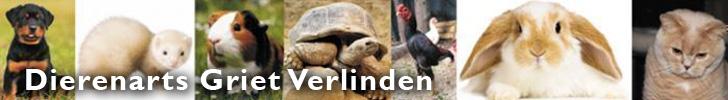 Banner Dierenarts Griet Verlinden