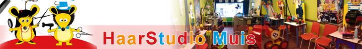 Banner Haarstudio Muis