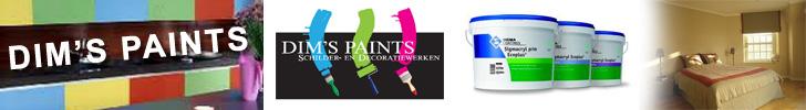 Banner Dim's Paints