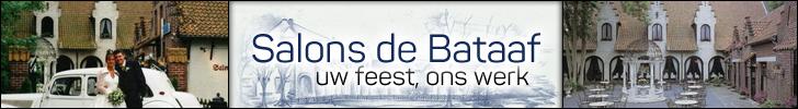 Banner Salons de Bataaf