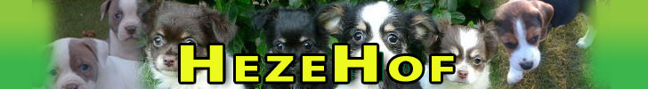 Banner Hezehof