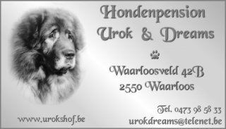 Hondenpension Urok & Dreams