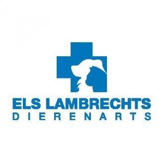 Dierenarts Els Lambrechts