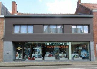 Lewyllie Elektro