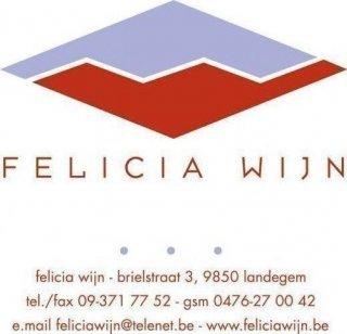 Felicia Wijn