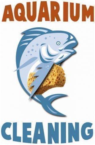 aquarium,onderhoud aquarium,vissen,eheim,aquariumzaak,aquarium West Vlaanderen,aquarium filter,aquarium,eheim,installatie aquarium,aquarium op maat,juwel aquaria,malawi cichliden,zoetwatervissen,aquariumvissen