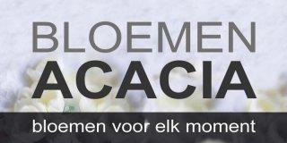 Bloemen Acacia