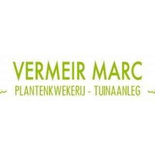 Vermeir Marc