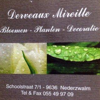 Bloemen Derveaux Mireille