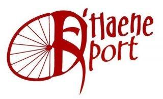 Logo D'Haene Sport uit Merelbeke