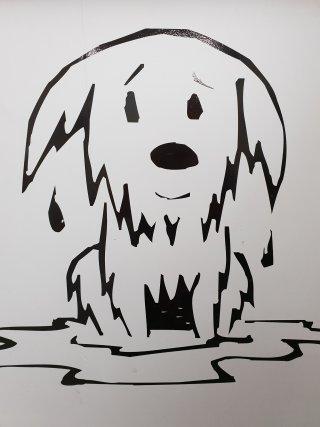 Hondenkapsalon 't Snuffeltje