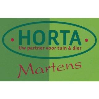 Horta Martens