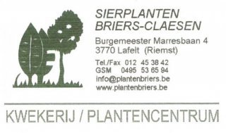 Sierplanten Briers