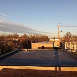 D.M. Roof