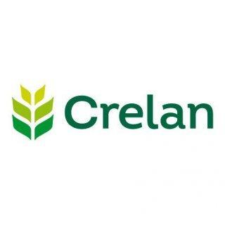 Crelan Kantoor Anseeuw - Isselée