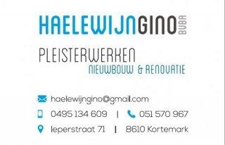 Haelewyn Gino - Pleisterwerken bvba
